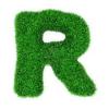 r-vert.png